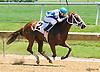 She's Going Strong winning at Delaware Park on 6/11/16