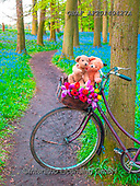 Assaf, CUTE ANIMALS, LUSTIGE TIERE, ANIMALITOS DIVERTIDOS, teddies, paintings,+Bicycle, Bicycles, Bike, Bikes, Bluebell, Bluebells, Bunch Of Flowers, Childhood, Color, Colour Image, Cute, Cycle, Dirt Road+, Forest, Nature, Outdoors, Path, Pathway, Photography, Spring, Teddy Bear, Teddy Bears, Toy, Toys, Tree, Trees, Wood, Woodla+nd,Bicycle, Bicycles, Bike, Bikes, Bluebell, Bluebells, Bunch Of Flowers, Childhood, Color, Colour Image, Cute, Cycle, Dirt R+oad, Forest, Nature, Outdoors, Path, Pathway, Photography, Spring, Teddy Bear, Teddy Bears, Toy, Toys, Tree, Trees, Wood, Woo+,GBAFAF20140427A,#ac#, EVERYDAY ,photos,photo