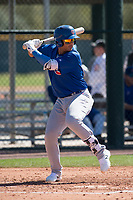 Chicago Cubs catcher Miguel Amaya (9) during a Minor League Spring Training game against the Oakland Athletics at Sloan Park on March 19, 2018 in Mesa, Arizona. (Zachary Lucy/Four Seam Images)