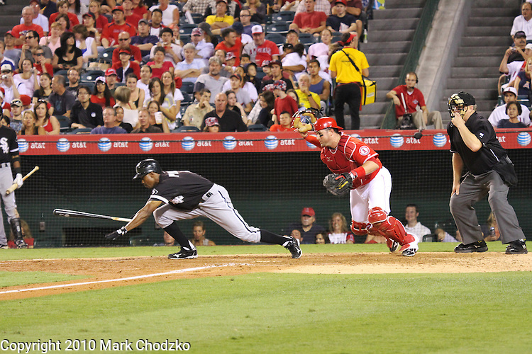Juan Pierre of the Chicago White Sox lays down a squeeze bunt against the Angels.