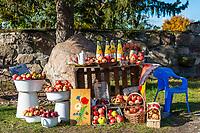 Straßenstand mit Obst und Saft, Kasse des Vertrauens, Grumsiner Forst, Weltnaturerbe der UNESCO, Angermünde, Uckermark, Brandenburg, Deutschland