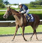 10 July 2010: Jessica Is Back and Jockey Luis Saez after the Princess Rooney Handicap at Calder Race Course in Miami Gardens, FL.