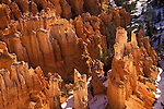 Morning sunlight on the incredible rock formations in Bryce Canyon National Park in Utah