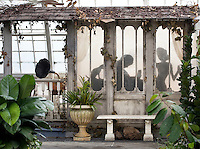 Wicked Plants - Conservatory of Flowers
