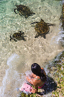 A woman respectfully watches green sea turtles (honu) on the North Shore of O'ahu.