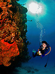 8 August 2010: SCUBA Diver Sally Herschorn glides over a coral and sponge outcropping at Turtle Reef on Grand Cayman Island in the British West Indies. The Cayman Islands are renowned for their excellent scuba diving. Model Release on File. Mandatory Credit: Ed Wolfstein Photo