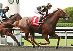 Judy the Beauty and John Velazquez win the Thoroughbred Club of America stakes at Keeneland Race Course.   October 05, 2013.