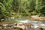 River flowing through lowland rainforest, Tawau Hills Park, Sabah, Borneo, Malaysia
