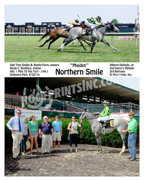 Northern Smile winning at Delaware Park racetrack on 6/23/14