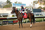 """DEL MAR, CA  AUGUST 28 :  #1 Ginobili, ridden by Drayden Van Dyke, returns to the connections after winning the Pat O'Brien Stakes (Grade ll) Breeders Cup """"Win and You're In"""" Dirt Mile Division on August 28, 2021 at Del Mar Thoroughbred Club in Del Mar, CA.(Photo by Casey Phillips/Eclipse Sportswire/CSM)"""