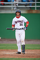 Potomac Nationals catcher Taylor Gushue (32) at bat during the first game of a doubleheader against the Salem Red Sox on May 13, 2017 at G. Richard Pfitzner Stadium in Woodbridge, Virginia.  Potomac defeated Salem 6-0.  (Mike Janes/Four Seam Images)
