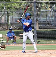 Brandon Lewis - 2019 AIL Dodgers (Bill Mitchell)