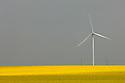 13/05/06 - LE MAGE - EURE ET LOIRE - FRANCE - Eoliennes et champs de Colza en fleur dans la BEAUCE. Pour illsustrer les biocarburants et les energies renouvelables - Photo Jerome CHABANNE