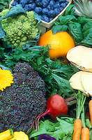 Mixture of garden vegetables, fruit, mushrooms, flowers, picked fresh, including broccoli, broccoflower, blueberries basil herebs, greens, carrots, red beets, squash