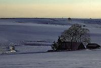 Europe/France/Auvergne/12/Aveyron/Env. de Laguiole: Aubrac - Ancien buron en hiver