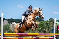 CLASS 33: Intro Horse 90cm