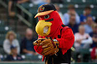 Rochester Red Wings mascot Spikes before a game against the Worcester Red Sox on September 3, 2021 at Frontier Field in Rochester, New York.  (Mike Janes/Four Seam Images)