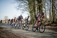 Sven Erik Bystrøm (NOR/UAE-Emirates) & World Champion Julian Alaphilippe (FRA/Deceuninck - QuickStep) over the last cobbled section of the day<br /> <br /> 76th Dwars door Vlaanderen 2021 (MEN1.UWT)<br /> 1 day race from Roeselare to Waregem (184km)<br /> <br /> ©kramon