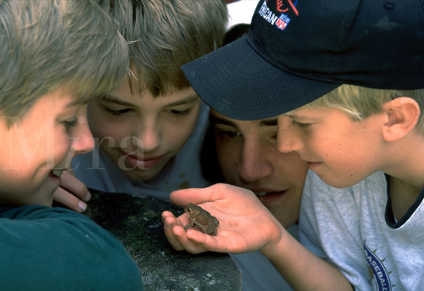 Portrait of a group of smiling boys as they look at a frog. boy, child, children, reptile, reptiles, education, exploration, discovery, expression, frogs.