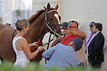 Scenes from Gulfsteam Park.  Lea (KY) checks in for his race at Gulfstream Park.  Hallandale Beach, Florida 02-09-2014