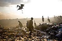 A young boy scavenging florescent light tubes in Kenya's Dandora dump site