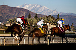 January 30, 2021: Horses race in the Robert B Lewis Stakes  infant of snow covered mountains at Santa Anita Park in Arcadia, California on January 30, 2021. Evers/Eclipse Sportswire/CSM