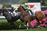 SHA TIN,HONG KONG-APRIL 24: Ambitious Champion,# 6 ,ridden by Chad Schofield,is taking position in the Queen Mother Memorial Cup (Local G3) at Sha Tin Racecourse on April 24,2016 in Sha Tin,New Territories,Hong Kong (Photo by Kaz Ishida/Eclipse Sportswire/Getty Images)