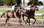 Jan 2011:  Bouquet Booth and Shaun Bridgmohan (6) win the Silver Bullet Day Stakes at the Fairgrounds in New Orleans, Louisiana.