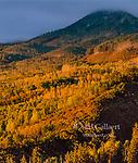 Last Light, Cimmaron Ridge, Uncompahgre National Forest, Colorado