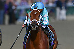 November 3, 2018: Monomoy Girl #11, ridden by Florent Geroux, wins the Longines Breeders' Cup Distaff on Breeders' Cup World Championship Saturday at Churchill Downs on November 3, 2018 in Louisville, Kentucky. Michael McInally/Eclipse Sportswire/CSM