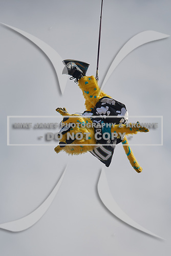 Jacksonville Jaguars mascot Jaxson de Ville bungee jumps before an NFL Wild-Card football game against the Buffalo Bills, Sunday, January 7, 2018, in Jacksonville, Fla.  (Mike Janes Photography)