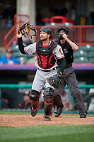 Altoona Curve catcher Arden Pabst (53) watches the play in front of umpire Sean Shafer-Markle during an Eastern League game against the Erie SeaWolves on June 5, 2019 at UPMC Park in Erie, Pennsylvania.  Altoona defeated Erie 6-2.  (Mike Janes/Four Seam Images)