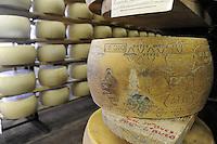 - Pozzali food industries Trescore Cremasco (Cremona); production of cheese Grana padano DOP;  warehouse for maturation....- Pozzali Industrie Alimentari a Trescore Cremasco (Cremona), produzione del formaggio Grana Padano DOP;  magazzino per la stagionatura