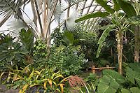 Tropical Conservatory at Denver Botanic Garden