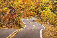 A road meanders through a hardwood forest in full Autumn display