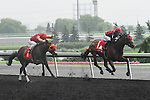 Midnight Aria(1) with Jockey Jesse M. Campbell aboard runs to victory at the Queen's Plate  at Woodbine Raceway in Toronto, Canada on July 07, 2013.