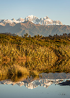 Southern Alps with Mt. Tasman and Aoraki Mt. Cook as seen from near Okarito, Westland Tai Poutini National Park, West Coast, South Westland, UNESCO World Heritage Area, New Zealand, NZ