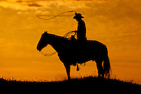 Ranch hand swinging a lassoo on horseback at sunset