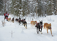 Fur Rondy Open World Championship Sled Dog Race mushers approach the gas line checkpoint in Anchorage's Bicentenial Park. Photo by James R. Evans