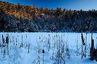Last Light At Lilypad Pond In The Adirondack Mountains Of New York State