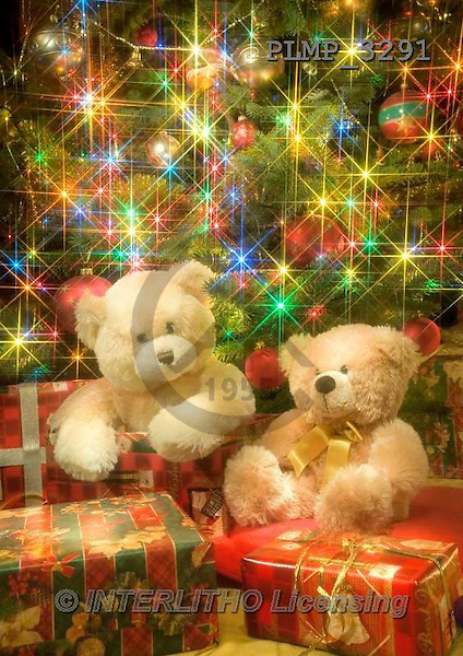 Marek, CHRISTMAS ANIMALS, WEIHNACHTEN TIERE, NAVIDAD ANIMALES, teddies, photos+++++,PLMP3291,#Xa# under Christmas tree,
