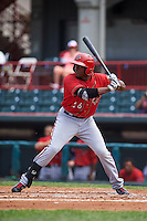 Harrisburg Senators outfielder Isaac Ballou (26) at bat during a game against the Erie Seawolves on August 30, 2015 at Jerry Uht Park in Erie, Pennsylvania.  Harrisburg defeated Erie 4-3.  (Mike Janes/Four Seam Images)