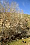 Ein Alva in the Upper Galilee
