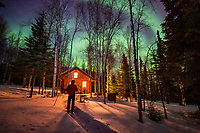 Man skiing in front of a log cabin pauses to watch the northern lights above the boreal forest in Fairbanks, Alaska.