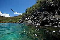 The rocky point at  Gibney Beach.Virgin Islands National Park.St John.U.S. Virgin Islands