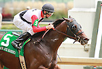 September 06, 2014:  Bradester and jockey Corey Lanerie win the 22nd running of the Ack Ack Handicap Grade 3 $100,000 added at Churchill Downs for owner Joseph Sutton and trainer Eddie Kenneally.   Candice Chavez/ESW/CSM