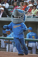 Myrtle Beach Pelicans mascot the Rally Shark before a game against the Potomac Nationals at Tickerreturn.com Field at Pelicans Ballpark on April 10, 2012 in Myrtle Beach, South Carolina. Potomac defeated Myrtle Beach by the score of 6-4. (Robert Gurganus/Four Seam Images)