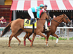 Dacita (no. 4), ridden by Javier Castellano and trained by Chad Brown, wins the 27th running of the grade 2 Ballston Spa Stakes for fillies and mares three years old and upward on August 29, 2015 at Saratoga Race Course in Saratoga Springs, New York. (Bob Mayberger/Eclipse Sportswire)