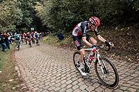 Tim Wellens (BEL/Lotto-Soudal) up the mean (and newly introduced) Moskesstraat cobbles<br /> <br /> 60th De Brabantse Pijl 2020 - La Flèche Brabançonne (1.Pro)<br /> 1 day race from Leuven to Overijse (BEL/197km)<br /> <br /> ©kramon