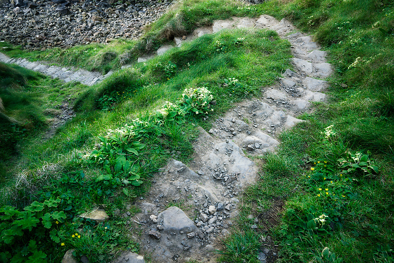 Stone path along Ulster Way Trail. Northern Ireland.